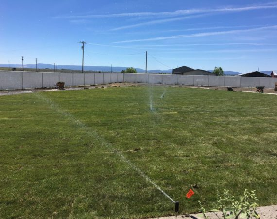 Sprinklers After – ELN Klamath Falls Sprinklers and Yard Maintenance