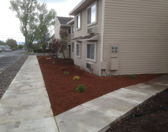 Bark and Plants After – ELN Klamath Falls Sprinklers and Yard Maintenance